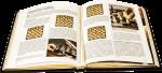 фото страниц Шахматы #3