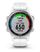 Спортивные часы Garmin Fenix 5S Plus Sapphire White with Carrera White Band (010-01987-01)