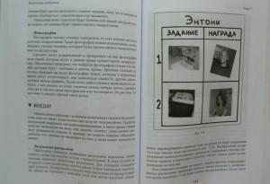 фото страниц Визуальная поддержка. Система действенных методов для развития навыков самостоятельности #5