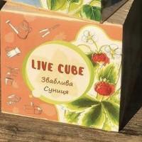 Подарок Набір для вирощування Brinjal 'Live cube' Суниця