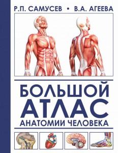 Книга Большой атлас анатомии человека