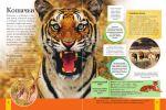 фото страниц Животные #5