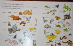 фото страниц Зоопарк #7