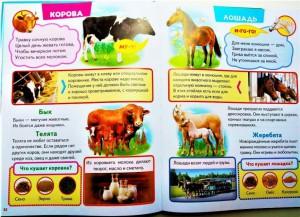 фото страниц Большая книга знаний для малышей #6