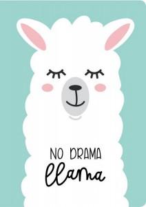 Книга Блокнот. Лама. No drama