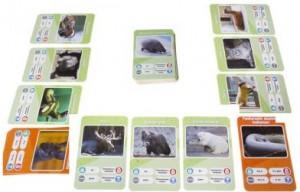 фото Настольная игра GaGa Games 'Это факт! Зоопарк' (GG066) #3