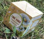 Подарок Набір для вирощування Brinjal 'Live cube' Ромашка