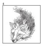 фото страниц Лисы. Рисунки для медитаций #2