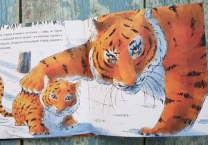 фото страниц Когда твой папа - тигр #8