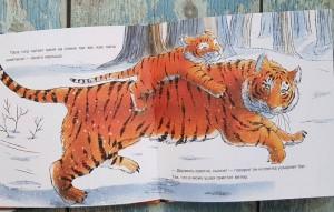 фото страниц Когда твой папа - тигр #11