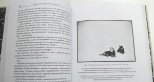 фото страниц Изнанка белого. Арктика от викингов до папанинцев #4