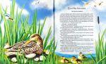 фото страниц Велика книжка казок #4