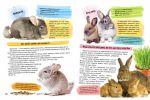 фото страниц Велика енциклопедія для дівчаток #7