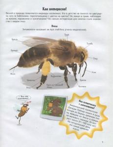 фото страниц Пчелы. О чем говорят животные #4
