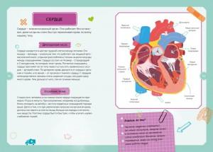 фото страниц Тело человека. Детская энциклопедия (в коробке) #8