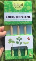 Подарок Набір 3 олівців Brinjal 'Ecostick': чарівні олівці з насінням рослин