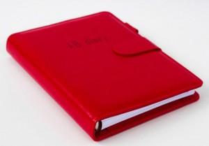 фото Бизнес-ежедневник AB diary, красный #4