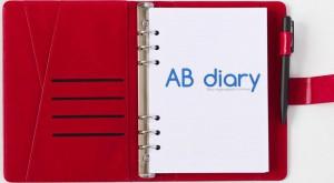 фото Бизнес-ежедневник AB diary, красный #3