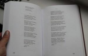фото страниц Хризалида. Стихотворения #4