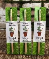 Подарок Еко-олівець Brinjal 'Ecostick', з насінням рослини