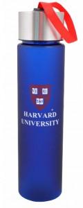 Подарок Бутылка для воды YES 'Harvard'  500 мл (706027)