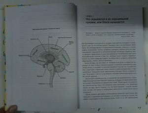 фото страниц Гендерный мозг. Современная нейробиология развенчивает миф о женском мозге #8