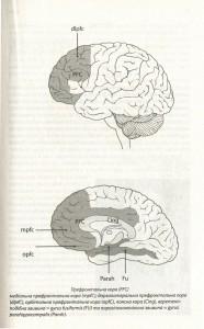 фото страниц Наш творчий мозок #8