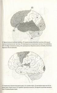 фото страниц Наш творчий мозок #4