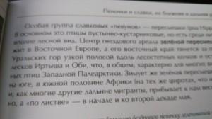 фото страниц Лесные птицы России #6