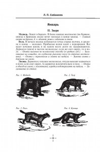 фото страниц Все об охоте #9