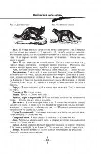 фото страниц Все об охоте #14