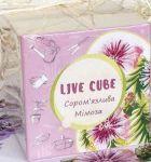 фото Набір для вирощування Brinjal 'Live cube' Мімоза #5