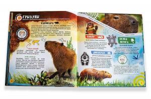 фото страниц WOW! Животные. Энциклопедия в дополненной реальности #11