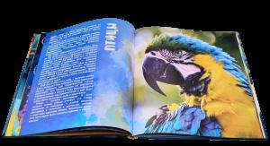 фото страниц WOW! Животные. Энциклопедия в дополненной реальности #4