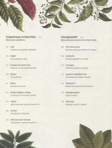 фото страниц Выдающиеся растения, которые изменили нашу жизнь #7