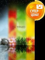 Настенный обогреватель Трио 'Сезоны' (00110)
