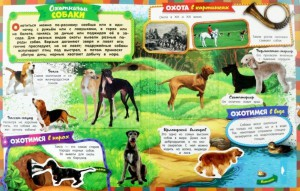 фото страниц Все-все-все про собак #3
