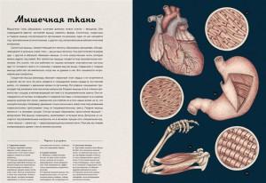 фото страниц Анатомикум #6