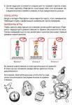 фото Настольная игра Манн, Иванов и Фербер 'Все на борт! Игра на развитие памяти для юных пиратов'(4631144607976) #6