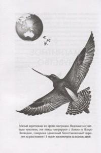 фото страниц Удивительный мир птиц. Легко ли быть птицей? #6