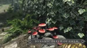 скриншот Elder Scrolls 5: Skyrim. Special Edition PS4 - Русская версия #7