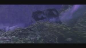 скриншот  Ключ для World of Warcraft: Battle Chest 30 дней (RU/CIS) #7