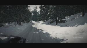 скриншот WRC 6 PS4 #10