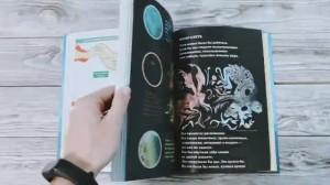 фото страниц Книга чудес. Иллюстрированное пособие по созданию художественных миров #15
