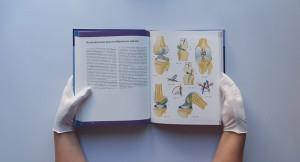 фото страниц Нижняя конечность. Функциональная анатомия #20